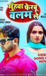 Muhawa Ferbu Balam Se Ft Neelam Giri  Bhojpuri Sad Song